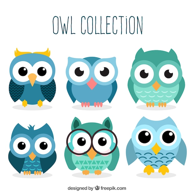 Set of owl characters Free Vector