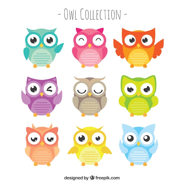 Owl Logo Set Of Eight: Set Of Owls With Large Eyes In Flat Design Vector