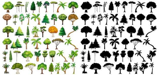 Набор растений и деревьев со своим силуэтом Бесплатные векторы