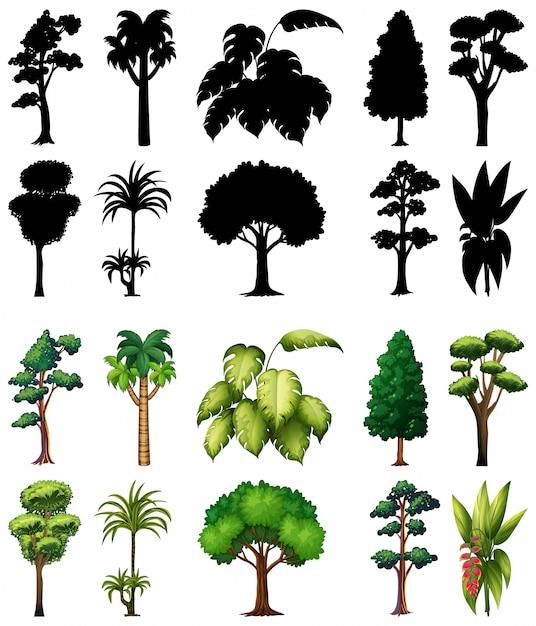 실루엣과 식물과 나무의 집합 무료 벡터