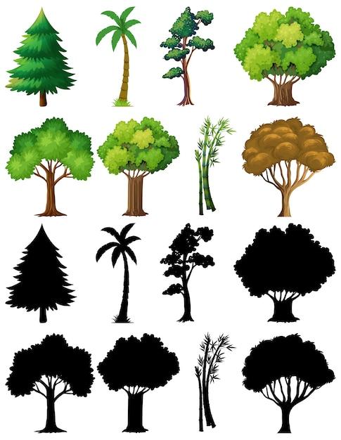 Набор растений и дерева с его силуэтом Бесплатные векторы