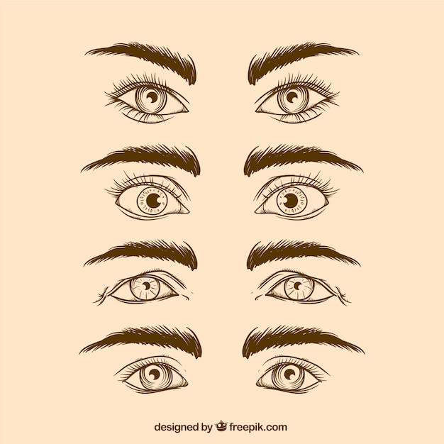 Cartoon Eyebrows Vectors Photos And Psd Files Free Download