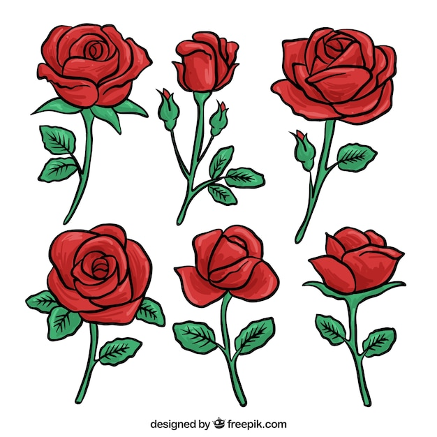 Set of red roses hand drawn