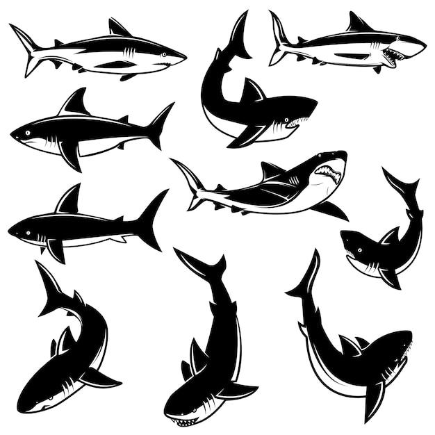 サメのイラストのセットです。ロゴ、ラベル、印刷、バッジ、ポスターの要素。画像 Premiumベクター