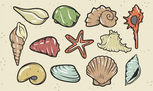 Набор иллюстрации shell premium Premium векторы