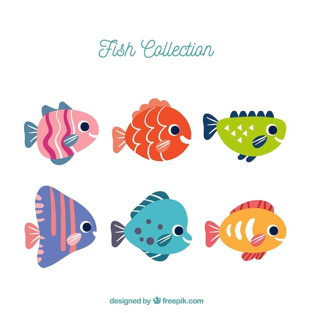 6 화려한 물고기 세트 무료 벡터