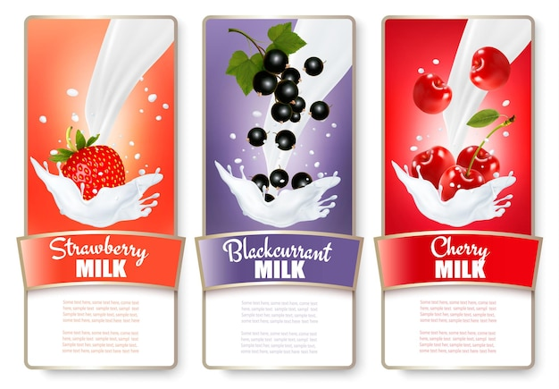 ミルクスプラッシュのベリーの3つのラベルのセット。ストロベリー、ブルーベリー、ラズベリー。 Premiumベクター