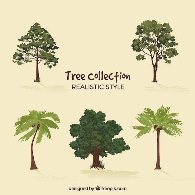 2d 스타일에서 나무 세트 무료 벡터
