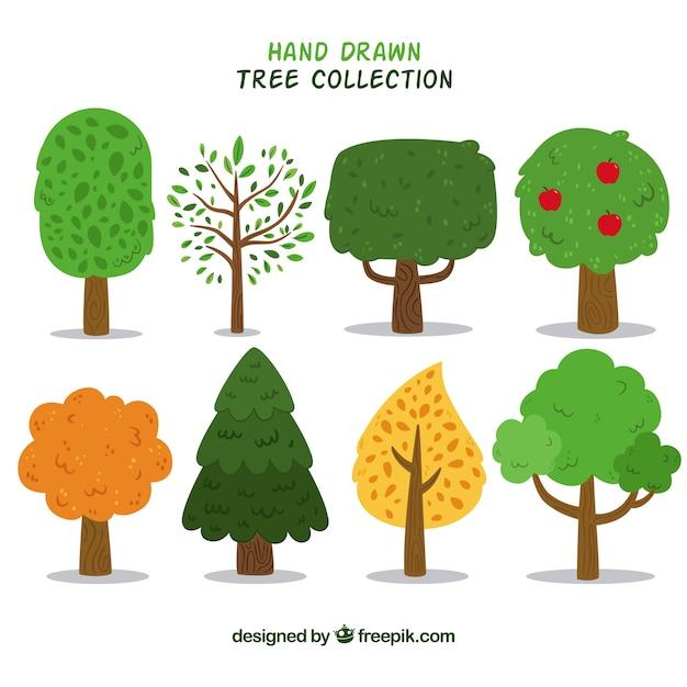 손으로 그린 스타일에 나무의 집합 프리미엄 벡터
