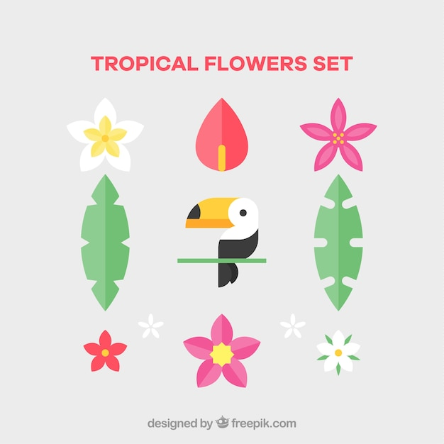 Set of tropical flowers and bird in flat\ style
