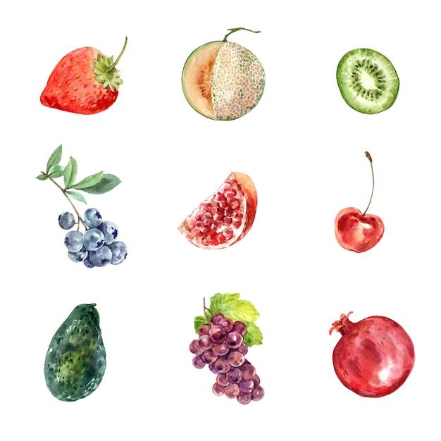 Набор различных изолированных фруктов Бесплатные векторы
