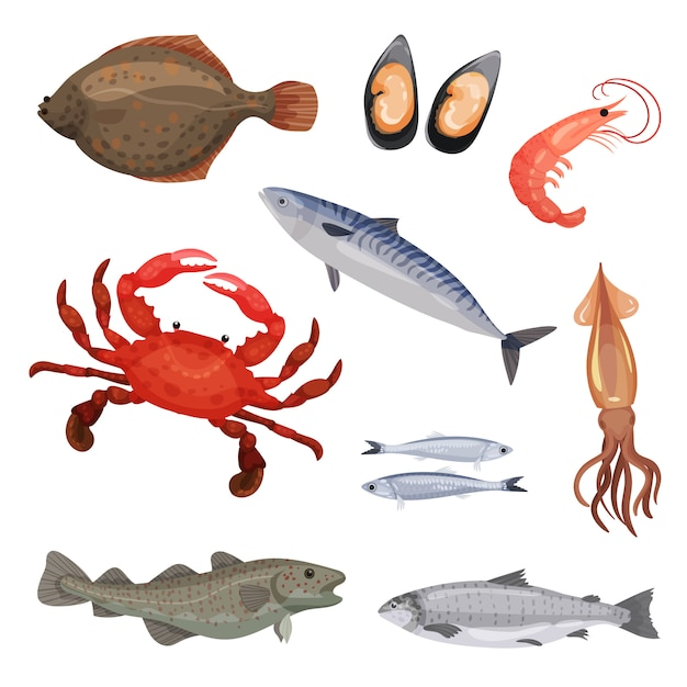 さまざまな魚介類のセットです。魚、カニ、軟体動物。海洋生物。海洋生物。詳細なアイコン Premiumベクター