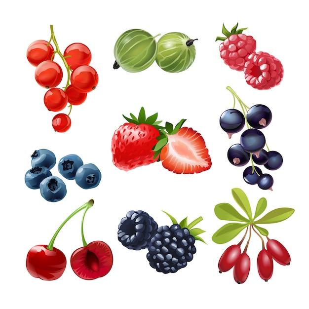 Набор векторных иконок сочных спелых ягод Бесплатные векторы