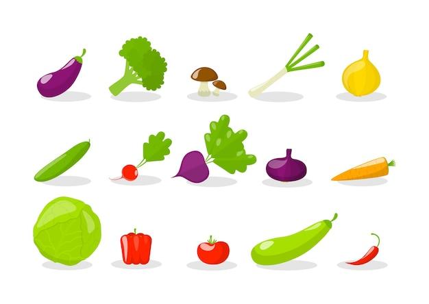 Набор овощей. свежие органические продукты. брокколи и морковь, перец и редис. иллюстрация Premium векторы