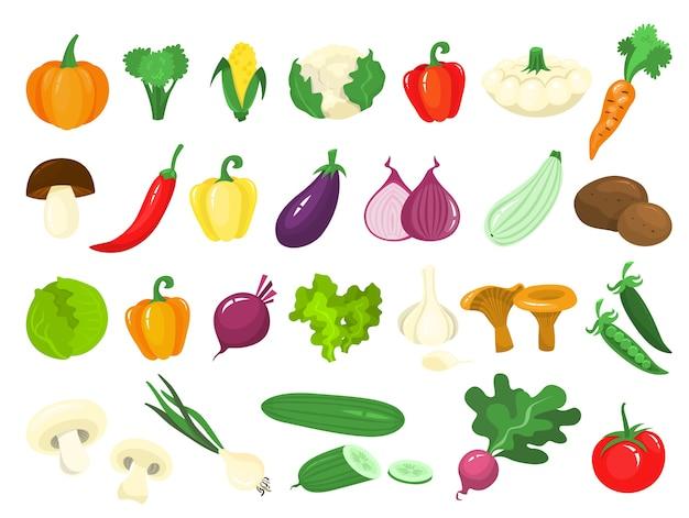 Набор овощей. свежие органические продукты. брокколи и морковь Premium векторы