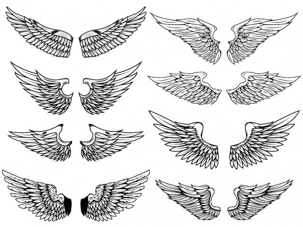 Комплект винтажных иллюстраций крылов на белой предпосылке. элемент для логотипа, этикетки, эмблемы, знака. иллюстрации. Premium векторы