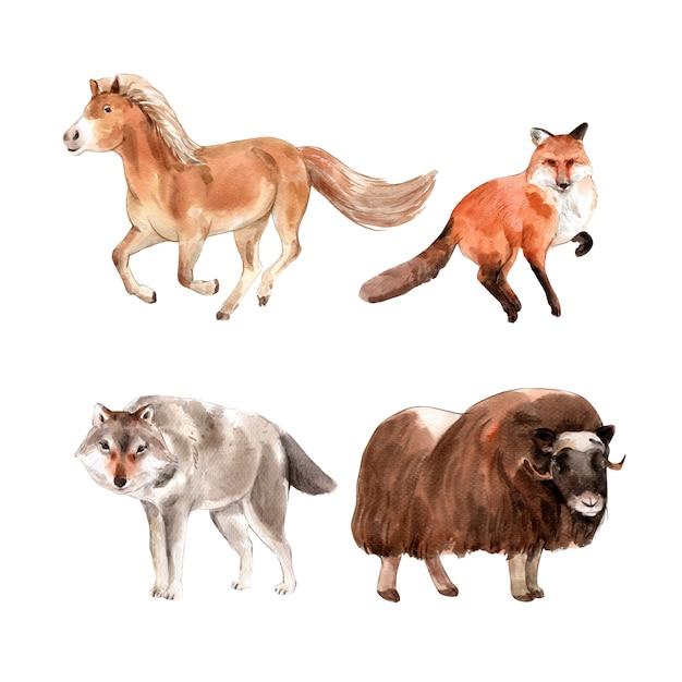水彩の馬、キツネ、ヤクのイラストのセットです。 無料ベクター