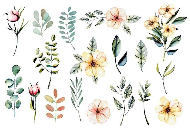 Набор акварельных розовых цветов и листьев иллюстрации Premium векторы