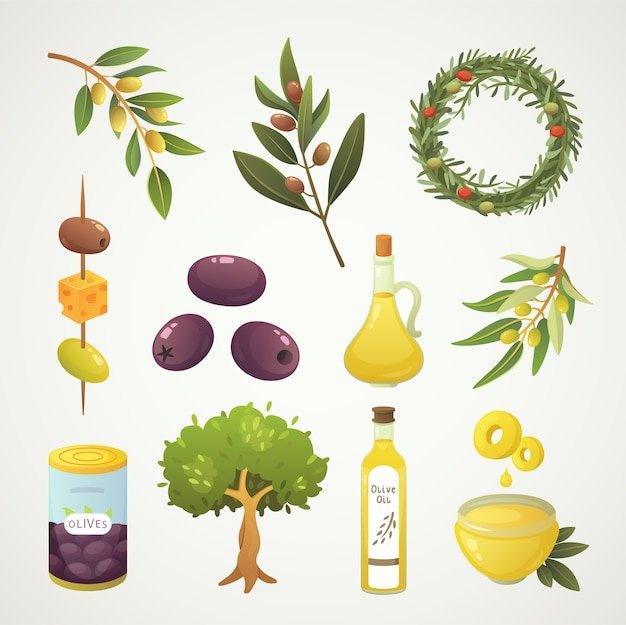 オリーブフルーツをセットします。漫画風のオリーブオイルのボトル、枝、木、ローズマリーの花輪のイラスト。 Premiumベクター