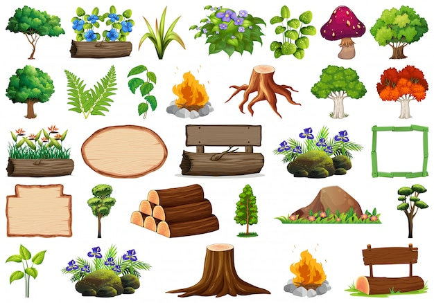 Set of ornamental plants and elements Free Vector