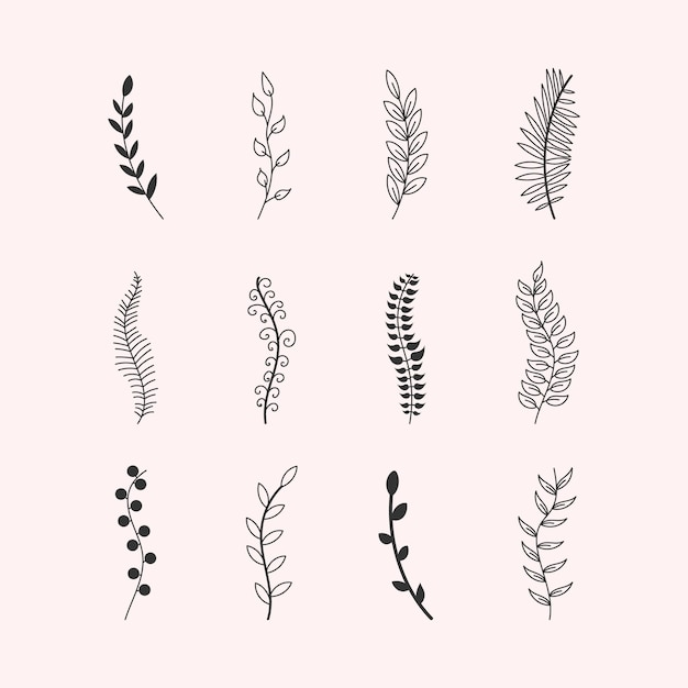 Set of ornaments tree branches eucalyptus trees,palm,leaves,grass.hand made sketch of vintage elements leaves, flowers,swirls and feathers.colored elements drawn with a pen brush. illustration. Premium Vector