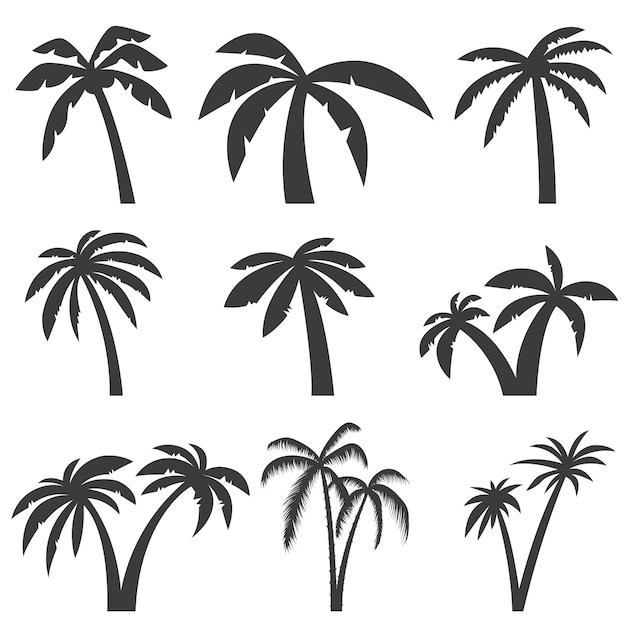 Set of palm tree icons  on white background.  elements for logo, label, emblem, sign, menu.  illustration. Premium Vector