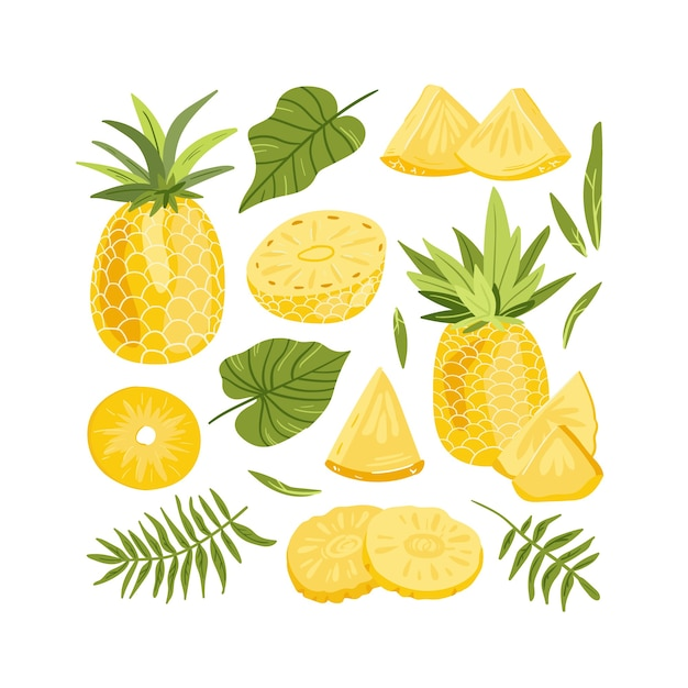 Set of pineapple whole and slices illustration vector Premium Vector