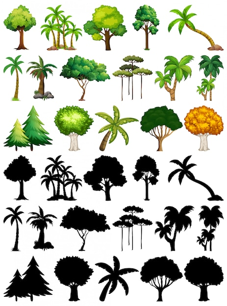 Set of plant and tree with its silhouette Free Vector