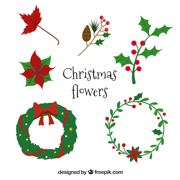 Set Of Poinsettias And Other Christmas Elements Vector
