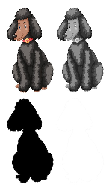 Set of poodle character Free Vector
