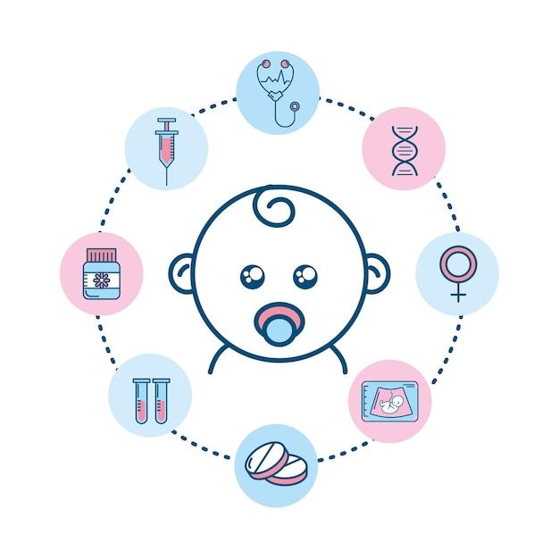 Set pregnancy fertilization process to biology reproduction Premium Vector