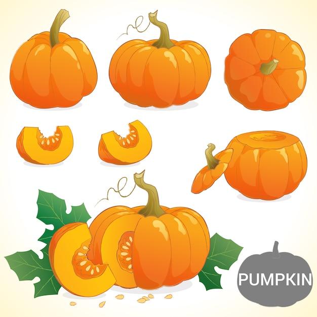 Set of pumpkin in various styles vector format Premium Vector
