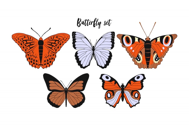 Set of realistic flat cartoon: monarch butterfly, argynnis paphia, kaisermantel, the peacock. Premium Vector