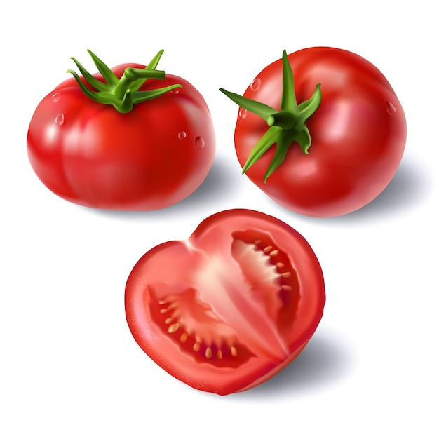 Set of realistic full and sliced tomatoes vectors Free Vector