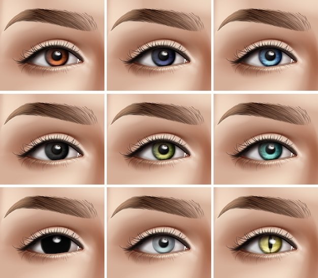 Premium Vector   Set of realistic women eyes with different types of colors  and decorative contact lenses