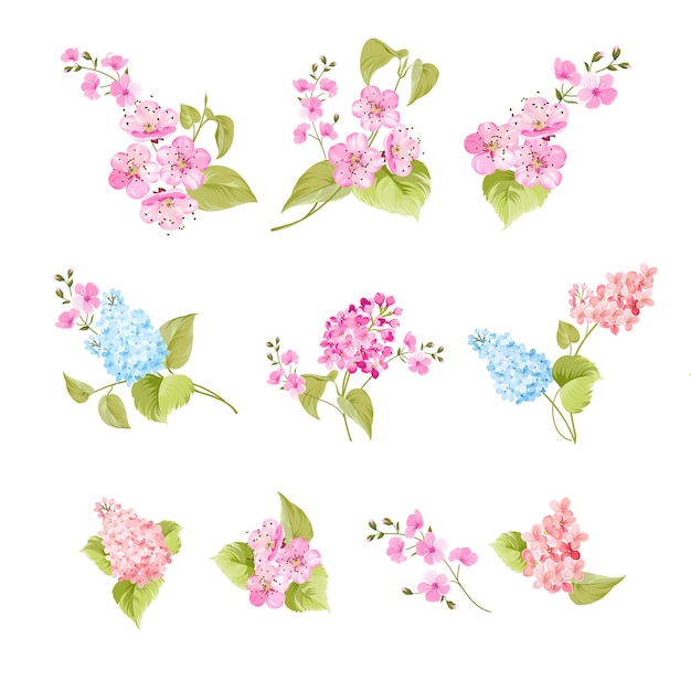 Set of sakura and lilac flowers elements Free Vector
