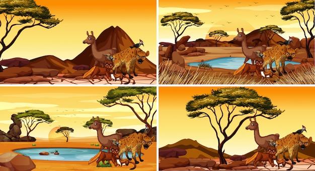 Set of scenes with animals in desert Free Vector