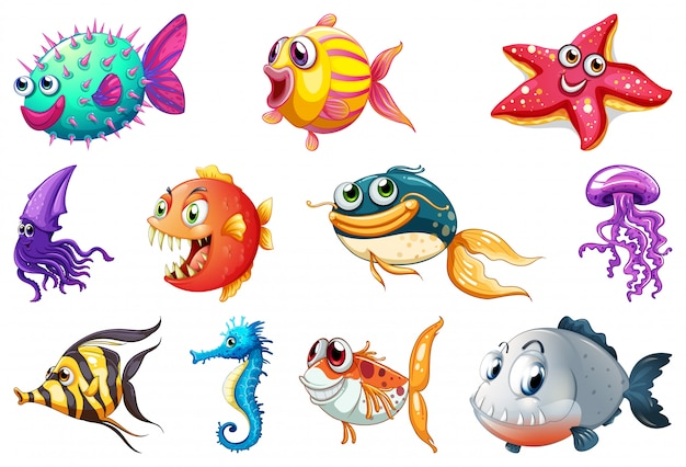 Set of sea creature Free Vector