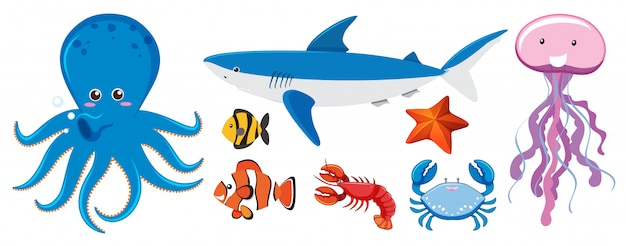 A set of sea creatures Free Vector