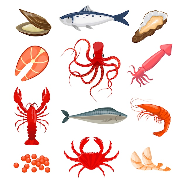 Set of seafood Premium Vector
