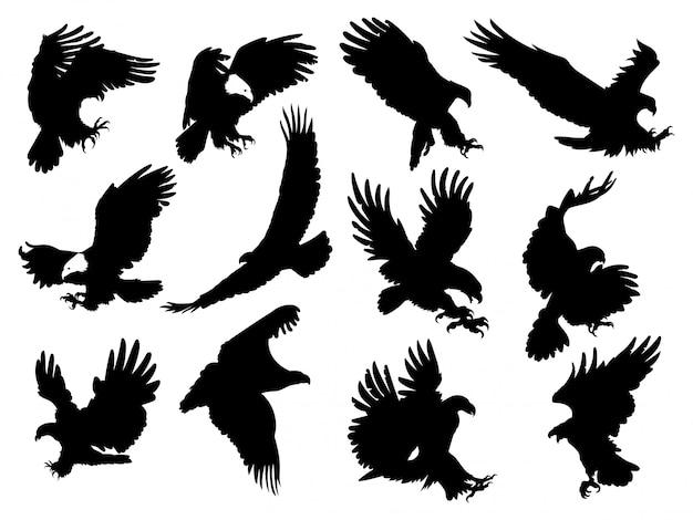 Premium Vector Set Of Silhouette Eagles Illustration Of Birds Prey