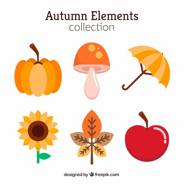 Set of six autumn elements in flat design Premium Vector