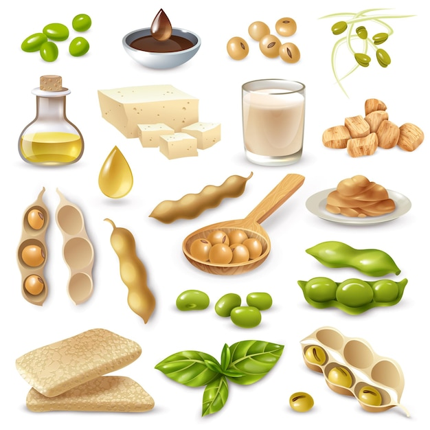 Set of soy food products with ripe beans and green leaves on white  isolated Free Vector