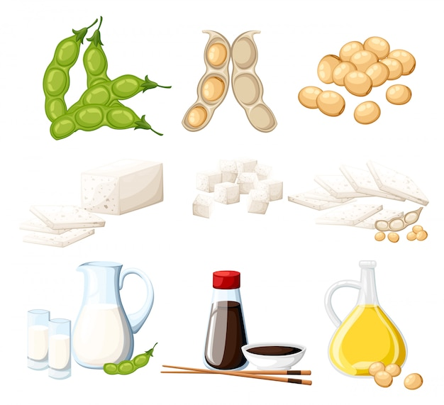 Set of soy products milk and oil in glass jug soy sauce in transparent bottle tofu and beans organic vegetarian food  illustration  on white background web site page and mobile app Premium Vector