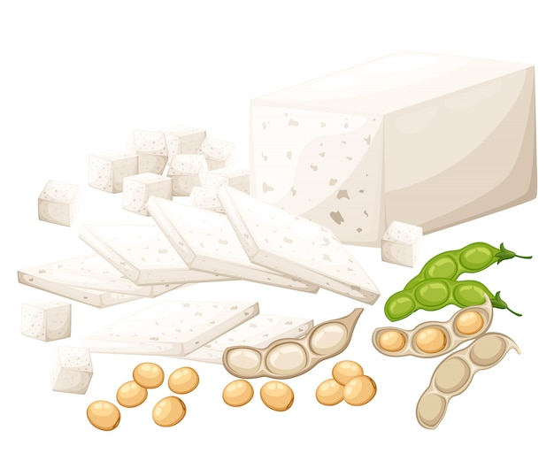Set of soy products tofu and beans organic vegetarian food  illustration  on white background web site page and mobile app Premium Vector