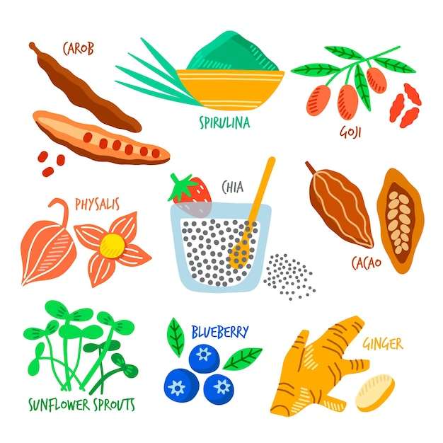 Set of superfood Free Vector