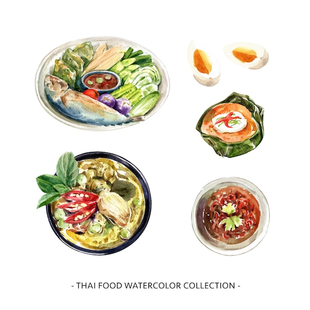 Insieme dell'illustrazione dell'acquerello isolata progettazione tailandese della raccolta dell'alimento. Vettore gratuito