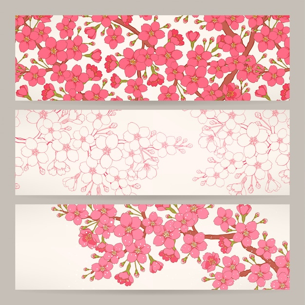 Set of three beautiful banners with pink cherry flowers Premium Vector