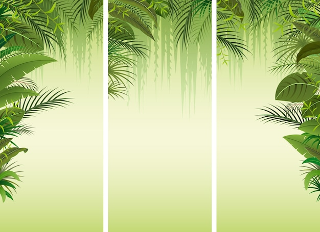 Set of three tropical forest background Premium Vector