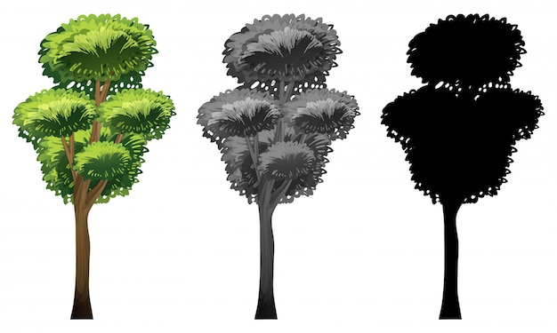 Set of tree design Free Vector